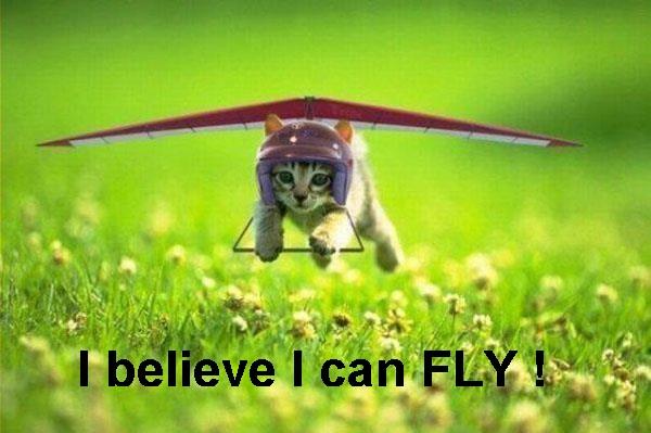 Hey-i-can-fly